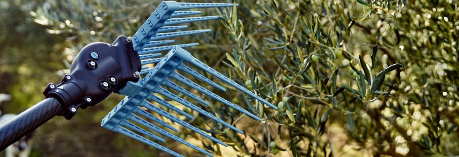 abbacchiatore scuotitore olive